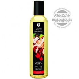 Huile Massage Bio Délice d'Erable Organica Shunga